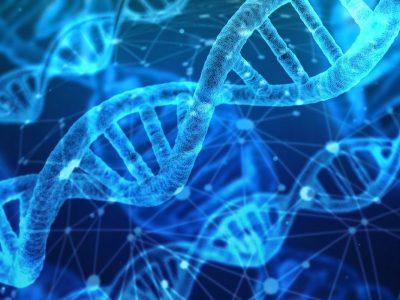 UV-C light and DNA